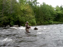 Fly Fishing on the Penobscot River
