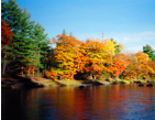 Fall foliage in the Katahdin Region