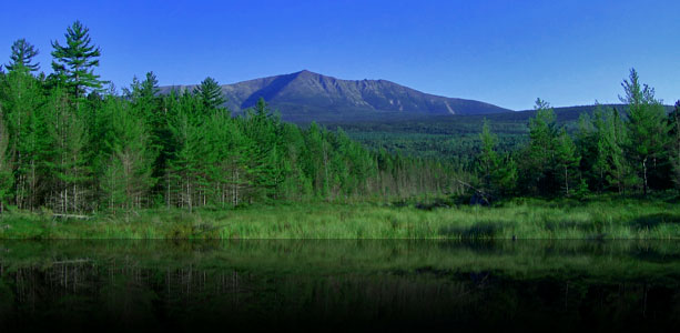 Katahdin from Compass Pond Moose